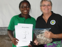 When Jenny Tryhane traveled to Africa in 2015 the African Community Moringa Project was first introduced here at Faith Power Preparatory Nursery School