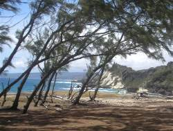 Cove Bay is a remote rugged part of Barbados located to the North East of the island.