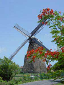Morgan Lewis one of the few complete windmills in the Caribbean