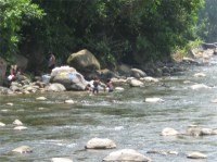 The river starts in the north east slopes of Morne Trois Pitons, located in the Central Forest Reserve