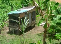 Seen here the existing chicken coop