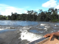 The Suriname River is 480 km long and flows through the country of Suriname.