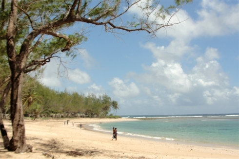 Welcome to Barbados a warm and friendly island where sun-drenched days turn into balmy tropical nights