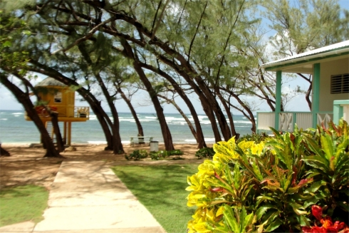 Welcome to Barbados Bath Beach located on the east coast of Barbados