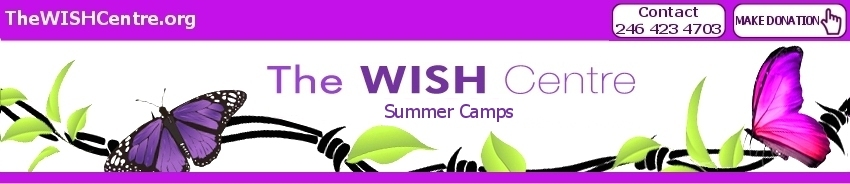 The WISH Centre Summer Camps 2013