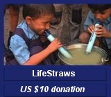 LifeStraws US $10 donation