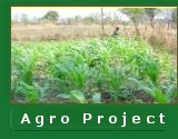 Agro Project