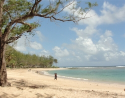 Bath Beach Barbados